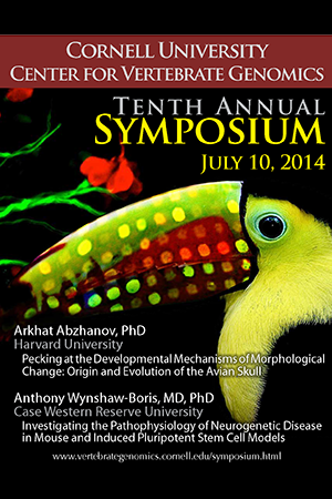 Promotional poster featuring a toucan superimposed over a circular phylogenetic plot